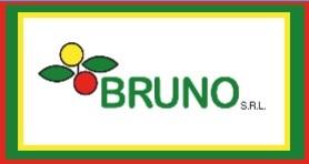 BRUNO SRL EXPORT