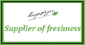HOOGESTEGER EXPORT